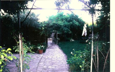 Renee's Gardens